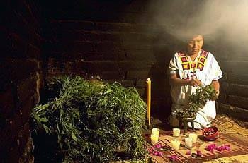 şaman terapi