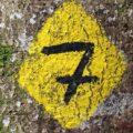 Numeroloji: Sayıların Hayatımızdaki Önemi