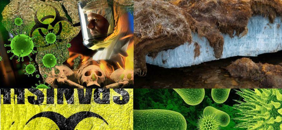 Permafrost Çözülüyor. Geçmişin Ölümcül Mikropları Uyanacak Mı?