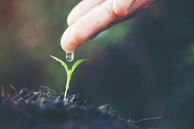 İnsanın Yolculuğu IV - Büyümek