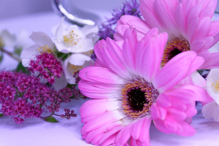 Çakralarla Çalışırken Çiçekler