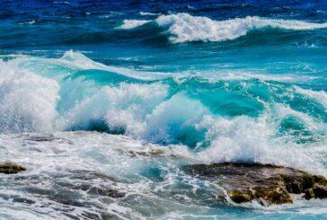 Okyanustan Ayrı Bir Damla