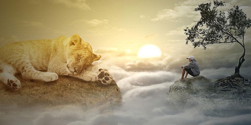 Zihnin Rüyasından Bedene Uyan!
