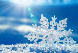 21-22 Aralık-2018 Kış Gündönümü- Winter Solstice