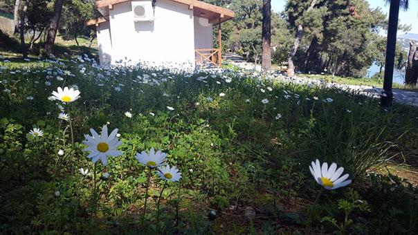 Ali Karakuş ile Bahar İnzivası