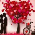 Sevgi Nedir