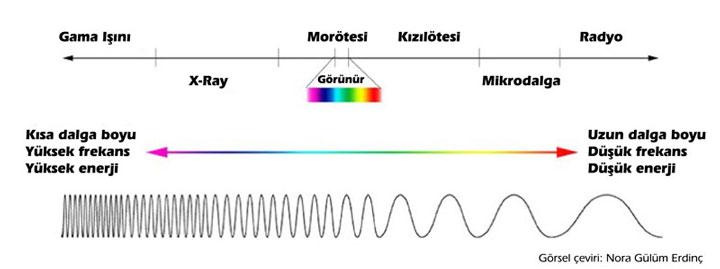 Işınların elektromanyetik spektrumu