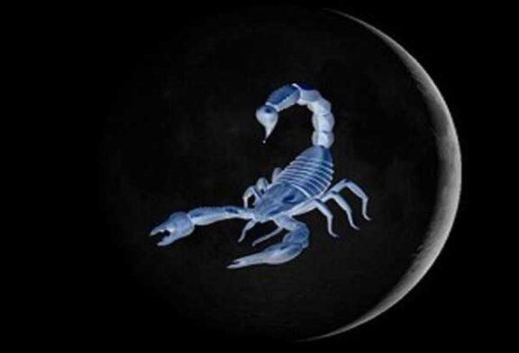 Akrep Yeni Ayı