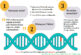 Mitokondriyal Havva: Yaralı fakat Asla Ölmedi