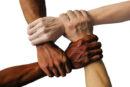 Birlik yasası