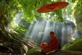 Bilgiyi bilgeliğe dönüştür