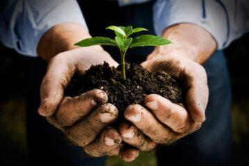 Bitkilerle iletişim