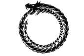Bir yılanın simya düğünü