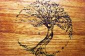 Ağaç yakma sanatı; ateşle ağacın aşkı