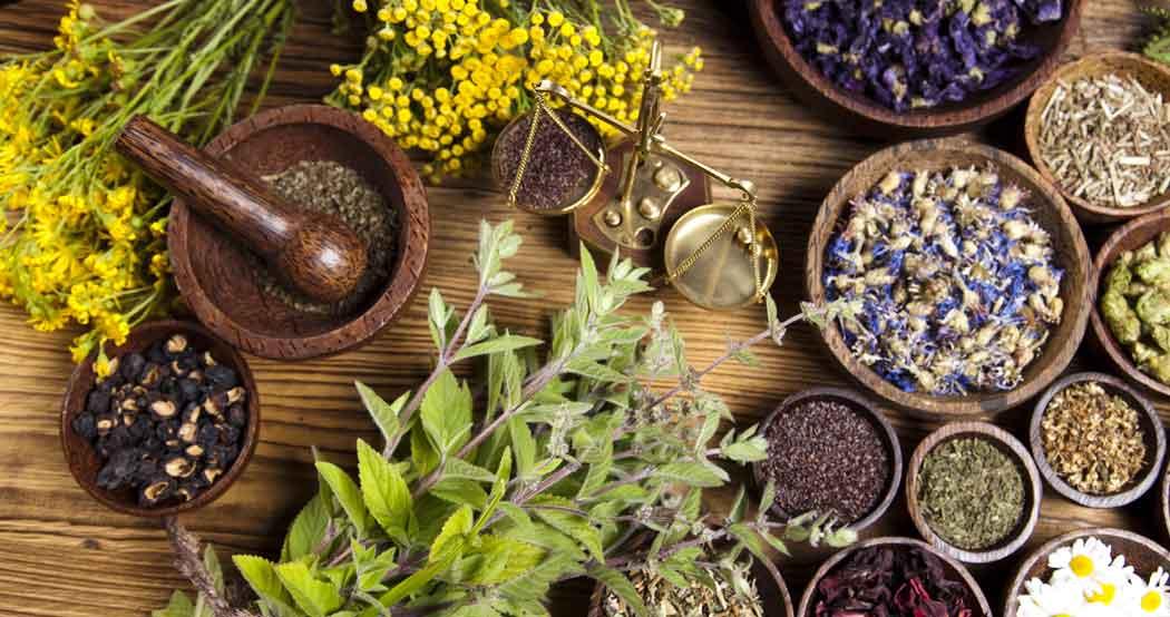 Agrimony, herbal, bitkisel yağlar