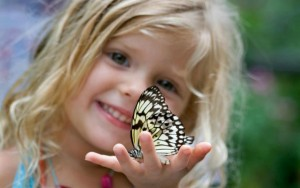 cute-child-holding-butterfly