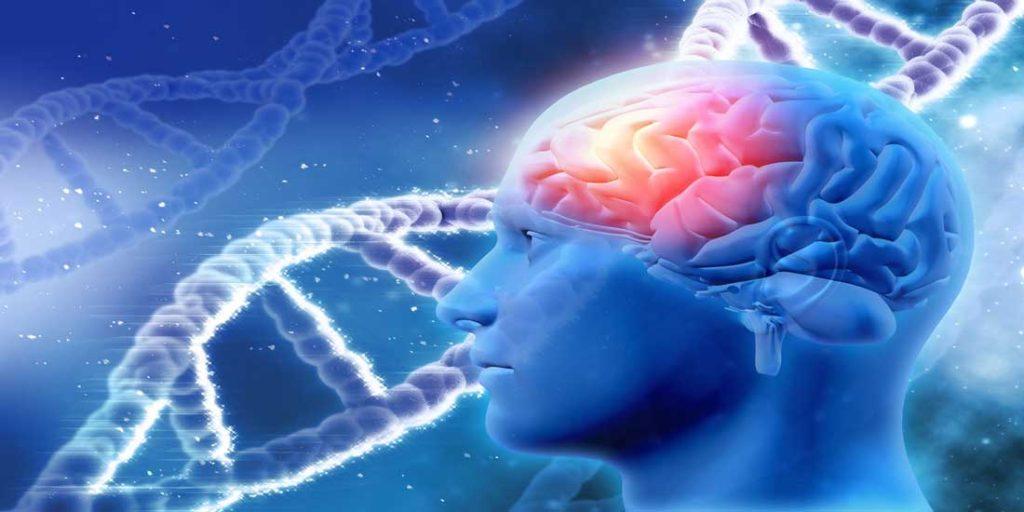 DNA yeniden kodlanabilir mi? Sarmal sayısı artabilir mi?