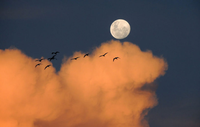5 Ekim Koç Dolunayı: Şiirsel Bir Atmosfer