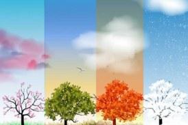 Yaz Biterken Dört Mevsim