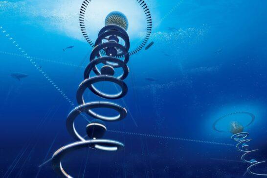 Tekamülde üçüncü boyut : Spiral ve teslimiyet